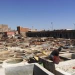 Diario de viaje al sur de Marruecos 2014. Día 2. Marrakech