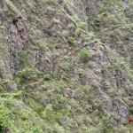 Inka Jungle. Un camino lleno de aventuras al Machu Picchu