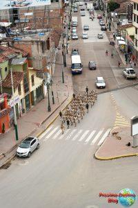 Mientras estaba arriba del monumento estos militares pasaron por al lado entrenando